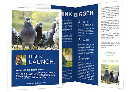 0000084000 Brochure Templates