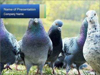0000084000 PowerPoint Template - Slide 1