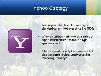 0000084000 PowerPoint Template - Slide 11