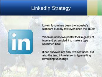 0000084000 PowerPoint Template - Slide 12
