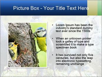 0000084000 PowerPoint Template - Slide 13
