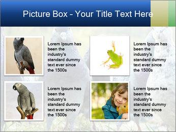 0000084000 PowerPoint Template - Slide 14