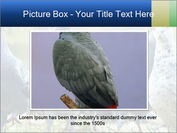 0000084000 PowerPoint Template - Slide 15