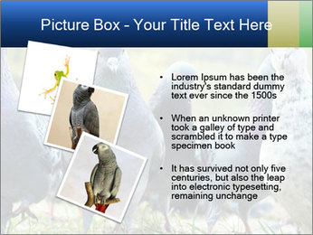 0000084000 PowerPoint Template - Slide 17