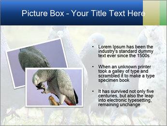 0000084000 PowerPoint Template - Slide 20
