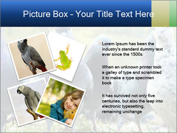 0000084000 PowerPoint Template - Slide 23