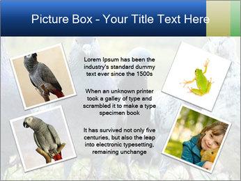 0000084000 PowerPoint Template - Slide 24