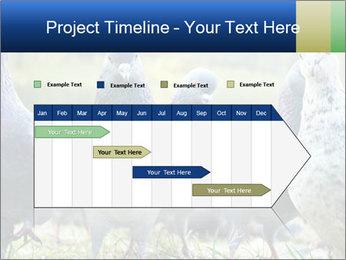 0000084000 PowerPoint Template - Slide 25