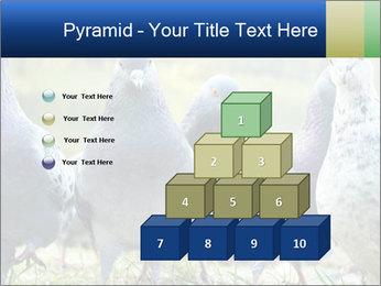 0000084000 PowerPoint Template - Slide 31
