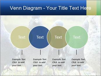 0000084000 PowerPoint Template - Slide 32