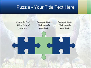 0000084000 PowerPoint Template - Slide 42