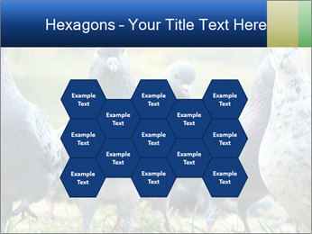 0000084000 PowerPoint Template - Slide 44