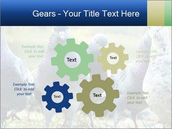 0000084000 PowerPoint Template - Slide 47