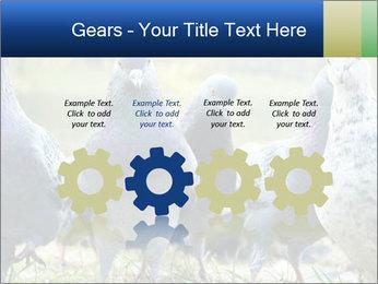 0000084000 PowerPoint Template - Slide 48