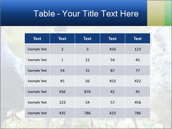 0000084000 PowerPoint Template - Slide 55
