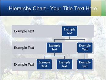 0000084000 PowerPoint Template - Slide 67