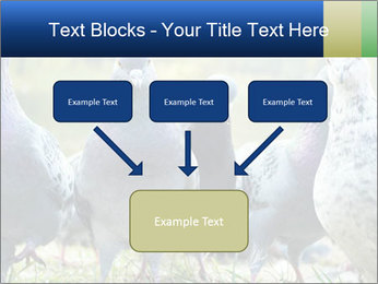 0000084000 PowerPoint Template - Slide 70