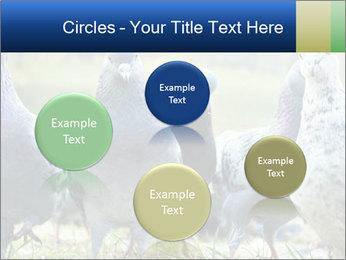0000084000 PowerPoint Template - Slide 77