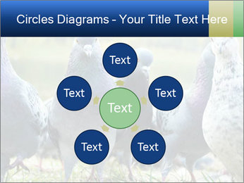0000084000 PowerPoint Template - Slide 78