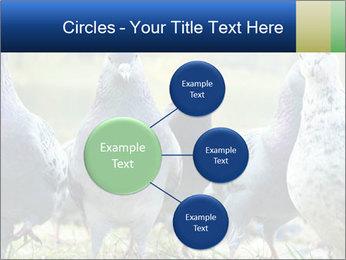 0000084000 PowerPoint Template - Slide 79