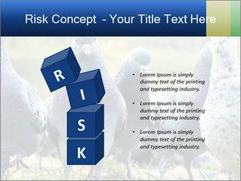 0000084000 PowerPoint Template - Slide 81