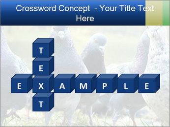 0000084000 PowerPoint Template - Slide 82