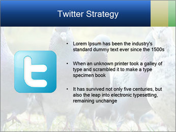 0000084000 PowerPoint Template - Slide 9