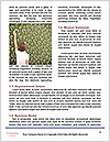 0000084004 Word Templates - Page 4