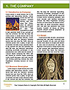 0000084005 Word Template - Page 3