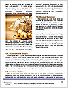 0000084015 Word Templates - Page 4