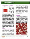 0000084019 Word Templates - Page 3