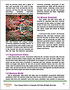 0000084019 Word Templates - Page 4