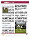 0000084021 Word Template - Page 3