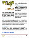 0000084021 Word Template - Page 4