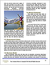 0000084028 Word Template - Page 4