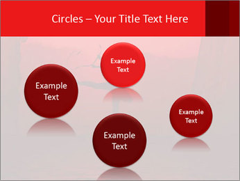 0000084029 PowerPoint Template - Slide 77