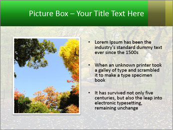 0000084032 PowerPoint Templates - Slide 13