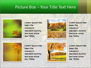 0000084032 PowerPoint Templates - Slide 14