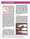 0000084034 Word Templates - Page 3