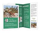 0000084035 Brochure Templates