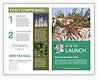 0000084035 Brochure Template