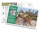 0000084035 Postcard Templates