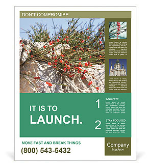 0000084035 Poster Template