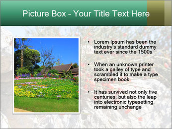 0000084035 PowerPoint Template - Slide 13