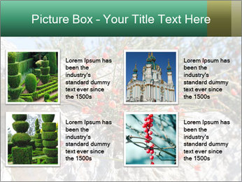 0000084035 PowerPoint Template - Slide 14