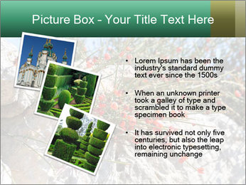 0000084035 PowerPoint Template - Slide 17