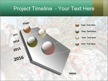 0000084035 PowerPoint Template - Slide 26