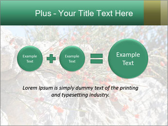 0000084035 PowerPoint Template - Slide 75