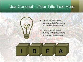 0000084035 PowerPoint Template - Slide 80