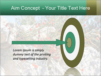 0000084035 PowerPoint Template - Slide 83